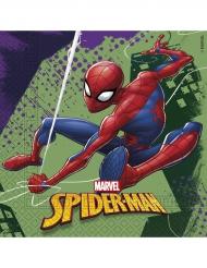 20 servetter från Spider-man™ till kalaset
