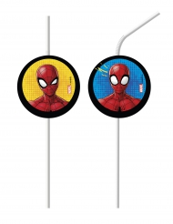 6 sugrör från Spider-Man - Kalasdekor