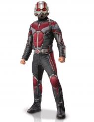 Ant-Man™ - Lyxig maskeraddräkt för vuxna