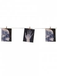 Girland med röntgenbilder - Halloweendekor