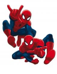 Spider-man™ - 2 väggdekorationer 30 cm