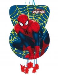 Spider-Man™ - Piñata för födelsedagsfesten 46 x 65 cm