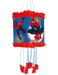 Spider-Man™ - Piñata till kalaset