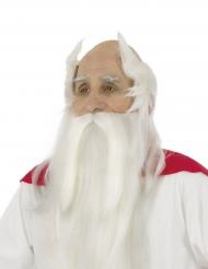 Miraculix - Peruk och skägg för vuxna från Asterix och Obelix™
