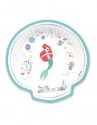 4 Ariel™ premium snäckskalstallrikar
