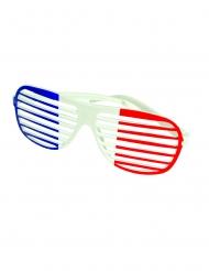 Randiga Frankrike-glasögon