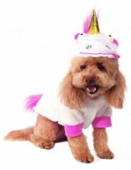Dumma Mej™ enhörningskostym för hund