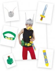 5 Barntillbehör för Asterix™