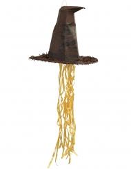 Piñata med Sorteringshatten från Harry Potter™