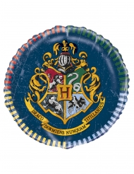 Harry Potter™ rund aluminiumballong 43 cm