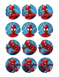 12 Muffinsdekorationer med Spiderman™ 5,8 cm