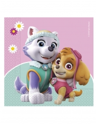 20 PAW Patrol Skye & Everest™ servetter 33x33 cm
