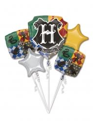 5 Harry Potter™ aluminiumballonger