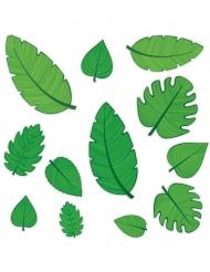12 Pappmärken med gröna löv 10-30 cm