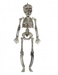Hängande skelett 30 cm