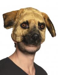 Realistisk hundmask vuxen