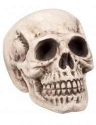 Dödskalle 23x22x31 cm