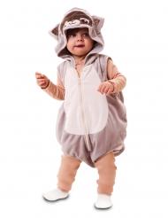 Tvättbjörn bebisdräkt