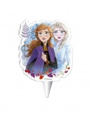 Frost 2™ födelsedagsljus 7,5 cm