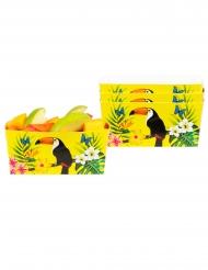 4 gula skålar med tukaner 7x7x14 cm