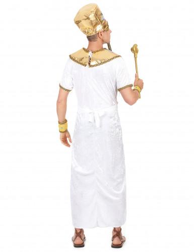 Egyptisk kungadräkt herrar-2
