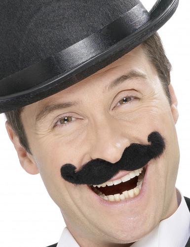 Svart engelsk mustasch vuxna