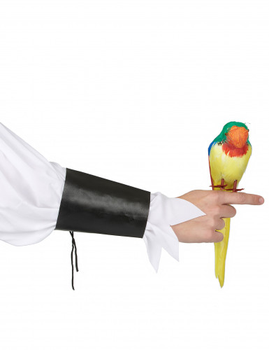 Hawaii-papegoja