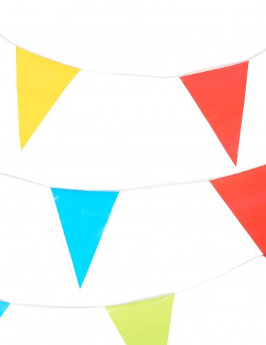 Girland av flerfärgade flaggor 10m-1