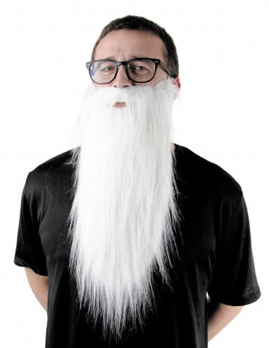 Långt vitt skägg vuxen