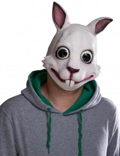 Mask kanin