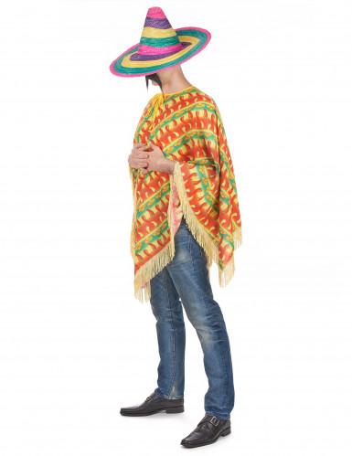 Chili poncho maskeraddräkt-1
