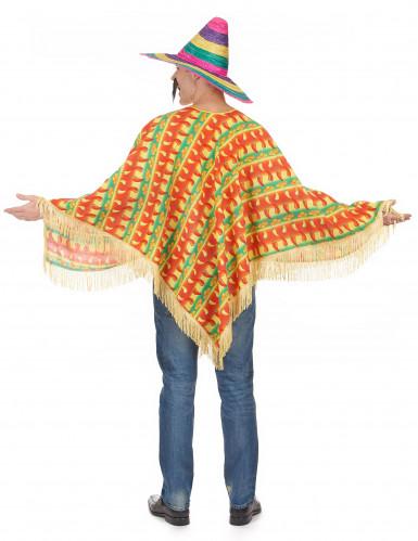 Chili poncho maskeraddräkt-2