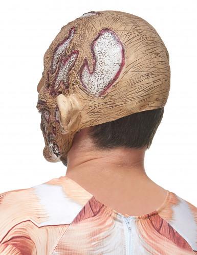 Förruttnad häxa - Halloweenmask i latex-1