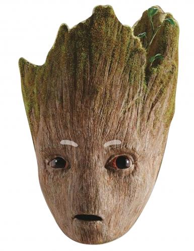 Avengers Infinity War Groot™ pappmask vuxen