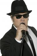 Glasögon från Blues Brothers™ för vuxna