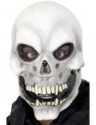 Skelettmask Halloween Vuxen