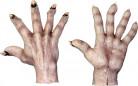 Zombiehänder Ljushyad Vuxen Halloween