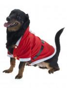 Julkappa för hundar