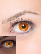 Oranga UV-linser för vuxna - Maskeradsminkning
