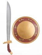 Guld gladiatorkit  Sköld  och svärd i plast barn