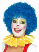 Gul clownkrage vuxen